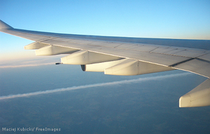 Thumb_wings-airplane